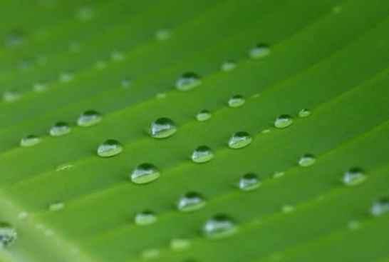 Waterdrop aimants Sangwoo Nam