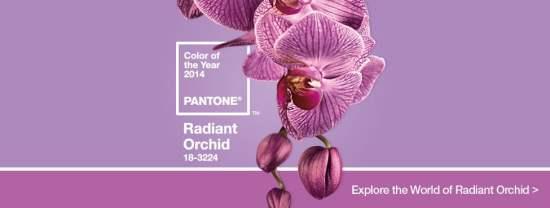 18-3224 Radiant Orchid Couleur année 2014