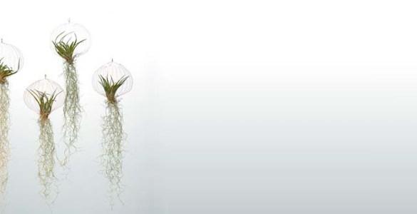 Air Planting pot original Carolijn Slottje