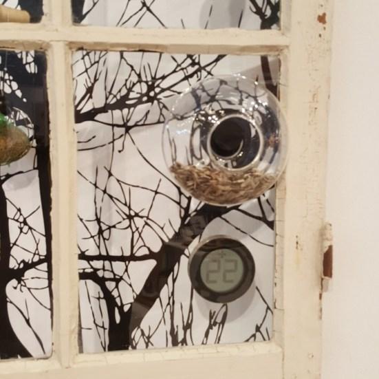 Eva solo mangeoir à oiseau fenetre