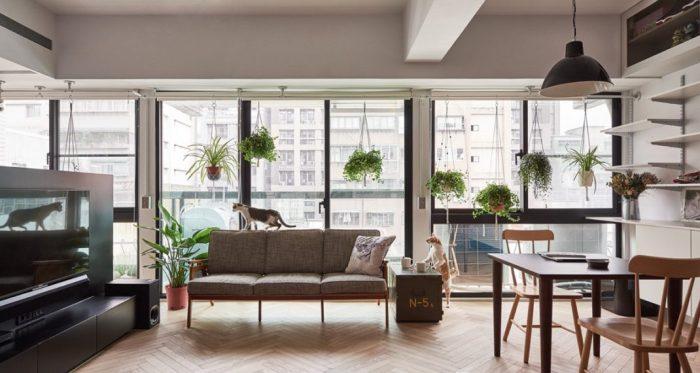 Décorer votre appartement si vous avez des chats avec ST Design Studio