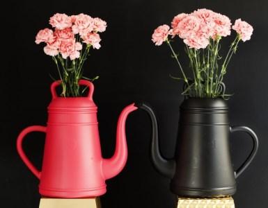 3 arrosoirs design pour prendre soin de vos plantes