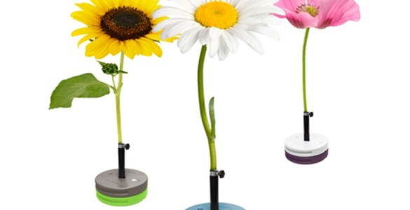 3 parasols design pour passer l'été à l'ombre
