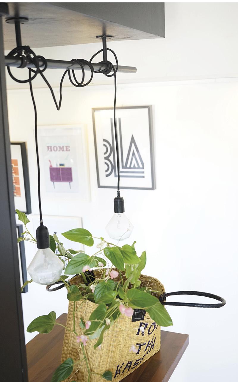 Tendance panier avec plante - blog DECOuvrir design