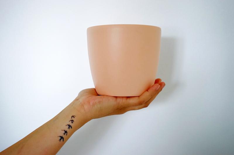 Fabriquer un pot de fleurs et plantes à suspendre