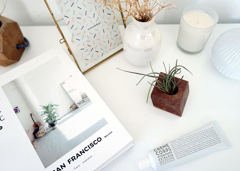 chambre_style_californien_papier_peint_cactus-13
