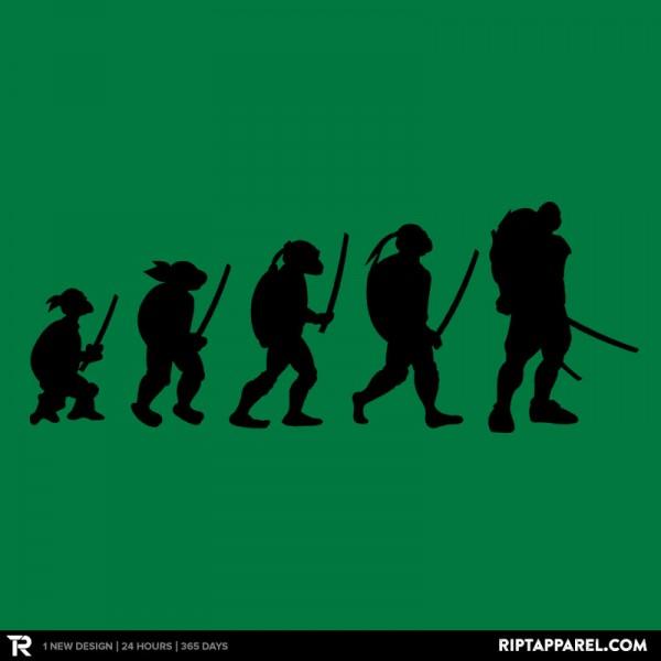 Turtle Evolution