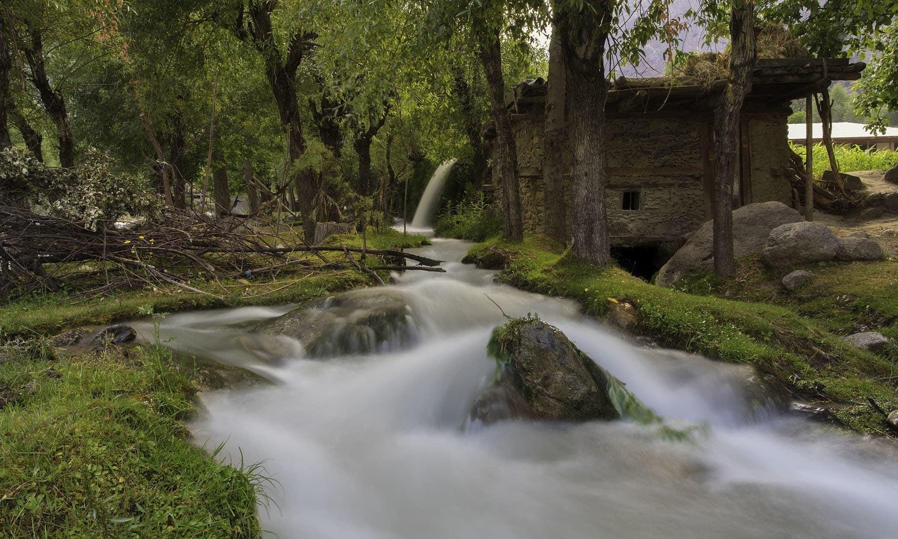 Bamburet Valley Chitral
