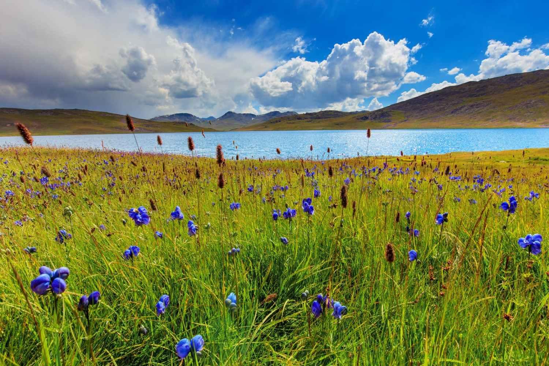 Sheosar Lake in the plains of Deosai Skardu