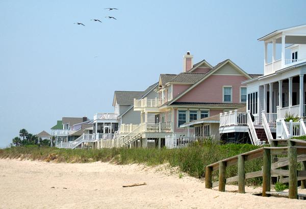 Eliminar pragas da casa de praia