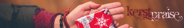 banner kerstpraise