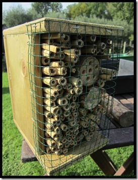 Nestkastje wilde bijen