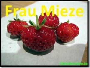 Aardbei 'Frau Mieze'