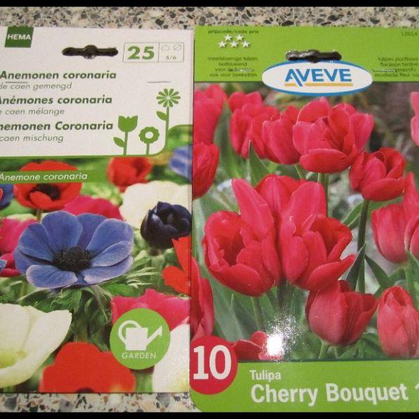 Anemonen en tulpen
