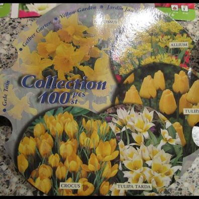 Gele Collectie