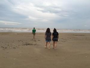 my beachcombers