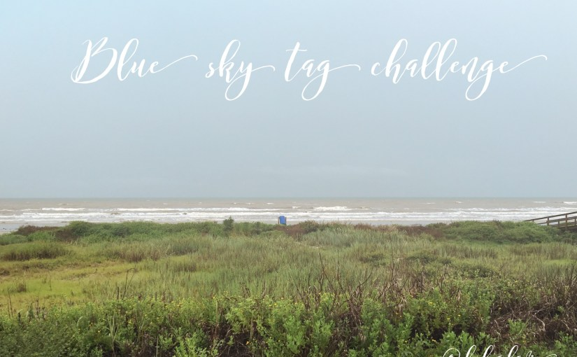 Getting to know me-questions and answers for the Blue Sky Tag Challenge