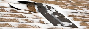 Common Environmental Hazards That Can Harm Your Roof