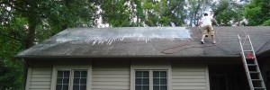 Clifton Roof Cleaning Service