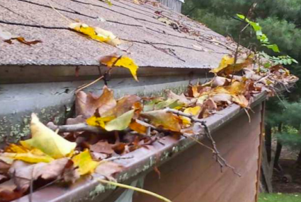 Fanwood Gutter Cleaning