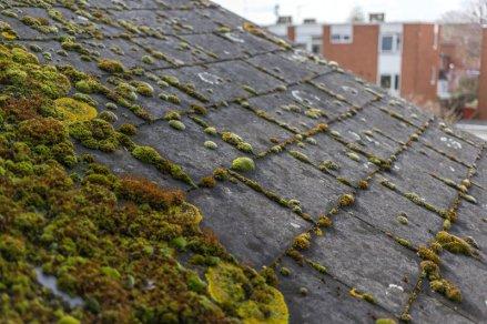 Roof Repair in Bergen County