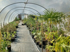 One of our tunnels