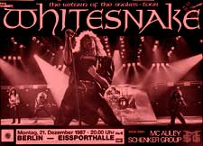 Poster do filme Whitesnake Live!