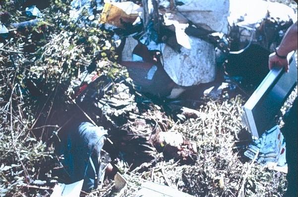 Aaliyah Plane Crash Dead