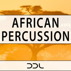 African Percussion <br><br>– 350 Wav Loops (50 Percussion Ensembles, 300 Individual Percussion Drums, 700 MB, 24 Bit Wavs.