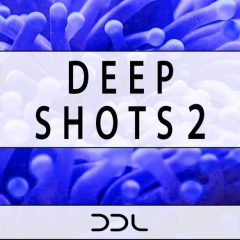 Deep Shots 2 <br><br>– 350 One-Shot Samples (50 Kick, 50 Clap, 50 Hihat Open, 50 Hihat Closed, 50 Shaker, 50 Sounds (25 Chord, 25 Bass)), 24 Bit Wavs.