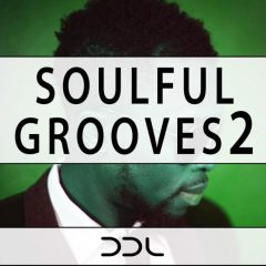 Soulful Grooves 2 <br><br>&#8211; 10 Themes (Bass, Chords, Melody, Guitar), Key-Labeled, 10 Full Beat Loops, 31 Beat Parts, 35 MIDI Loops, 226 MB, 24 Bit Wavs.