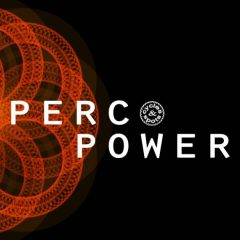 Perc Power <br><br>&#8211; 411 Percussion Wav Loops, 2-4 Bars, 476 MB, 24 Bit Wavs.