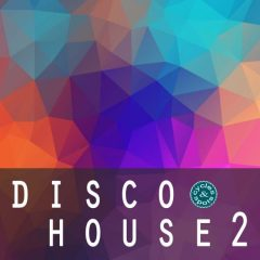 Disco House 2 <br><br>&#8211; 5 Construction Kits (Wav + MIDI), All Em, 80 Bonus Files, 160 Total files, 242 MB, 24 Bit Wavs.