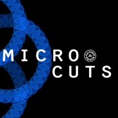 Micro Cuts <br><br>– 300 Wav Loops, 2 Bars, 319 MB, 24 Bit Wavs.