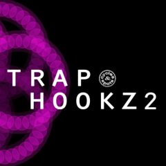 Trap Hookz 2 <br><br>&#8211; 10 Construction Kits (150 Wav Loops &#038; MIDI Files), 400 MB, 24 Bit Wavs.