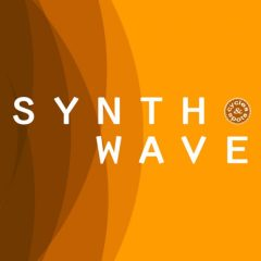 Synthwave <br><br>&#8211; 20 Themes (Bass Loops, Chord Loops, Melody Loops,Wav+MIDI), 20 Full Beat Loops, 387 MB, 24 Bit Wavs.