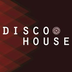 Disco House <br><br>&#8211; 10 Themes (Bass, Chord, Melody), 10 Beats (Plus No-Kick Versions), Wav + MIDI Loops, 103 Files, 248 MB, 24 Bit Wavs.