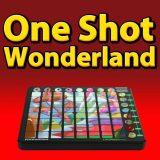 launchpad,arpeggiator,one shot samples,ableton,live,novation