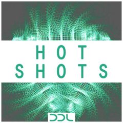 Hot Shots <br><br>&#8211; 500 One Shots (50 Kicks, 50 Sub Kicks, 50 Claps, 50 Open Hihats, 50 Closed Hihats, 50 Shakers, 50 Bongos/Congas, 50 Toms), 24 Bit Wavs.