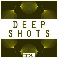 one shots,deep house,drum,kick,hihat,snare,perc