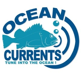 Explore Our Top 10 Picks For Ear Opening Ocean Podcasts 3