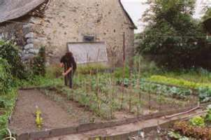 Raised Bed Gardens: How To Build the Perfect 4' x 8' Box, 4' x8's, raised bed, garden boxes, 4 x 8 box, AC2, arsenic free, beets, cabbage, chard, composting, cool weather crops, early crops, easy care gardening, exterior nails, French intensive gardening, lettuces, lumber, Monet, no weeding, onions, peat moss, peppers, perlite, potager, raised bed, small garden, spinach, succession planting, tomatilloes, tomatoes, turnips, vermiculite, weed-free
