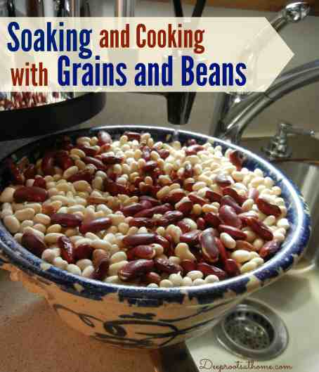 Soaking and Cooking with Grains and Beans, phytic acid, antinutrients, Weston A. Price, enzyme inhibitors, careful preparation, celiac disease, Crohn's disease, block absorption, fermenting grains, overnight soaking, sprouted grain bread, organic, sour dough, Nourishing Traditions, Sally Fallon, Mary Enig, PhD, Politically Correct Nutrition, photos, sprouting