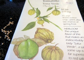Tomatillos ~ A Salsa Verde Must!, Mexican cuisine, small green fruit, green salsa recipe, roasted tomatillo recipe, ingredients, directions, garden, planting, all about tomatillos, chilled sauce, green sauce, condiment, zesty, paper husks,  Latin American green sauces, sweet-sour, searing, piquante, Seeds are reddish and very much like tomato seeds. Heirloom.