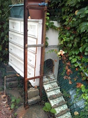 old country chicken coop out of a recycled chest of drawers, small flock to roost at night