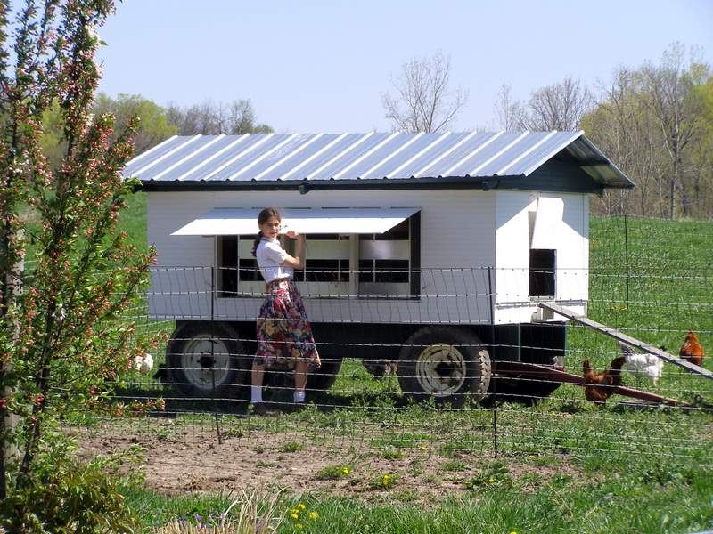chicken tractor with egg boxes for 12 chickens, pull with lawn mower