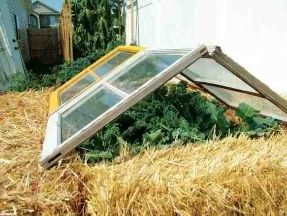 homemade cold frame, straw bale cold frame