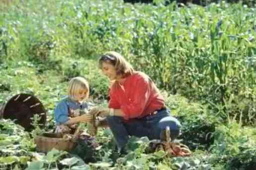 What Makes A Good Gardener?, gardener at heart, working in the dirt, pastime, caring person, gardening, planting, sowing seeds, harvesting, love being outdoors, digging in the dirt, garden trowel, child's garden tools, child in a garden, working in the garden with mom, child, gardening