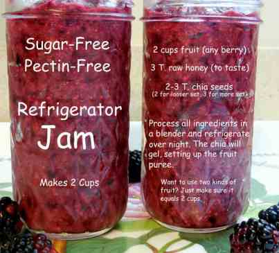 Ode To Summer, A Visual Journal, refrigerator jam, red raspberry, chia seed thickener