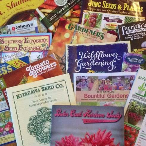 Get monsanto out of your garden list of seed companies for Gardeners supply company catalog